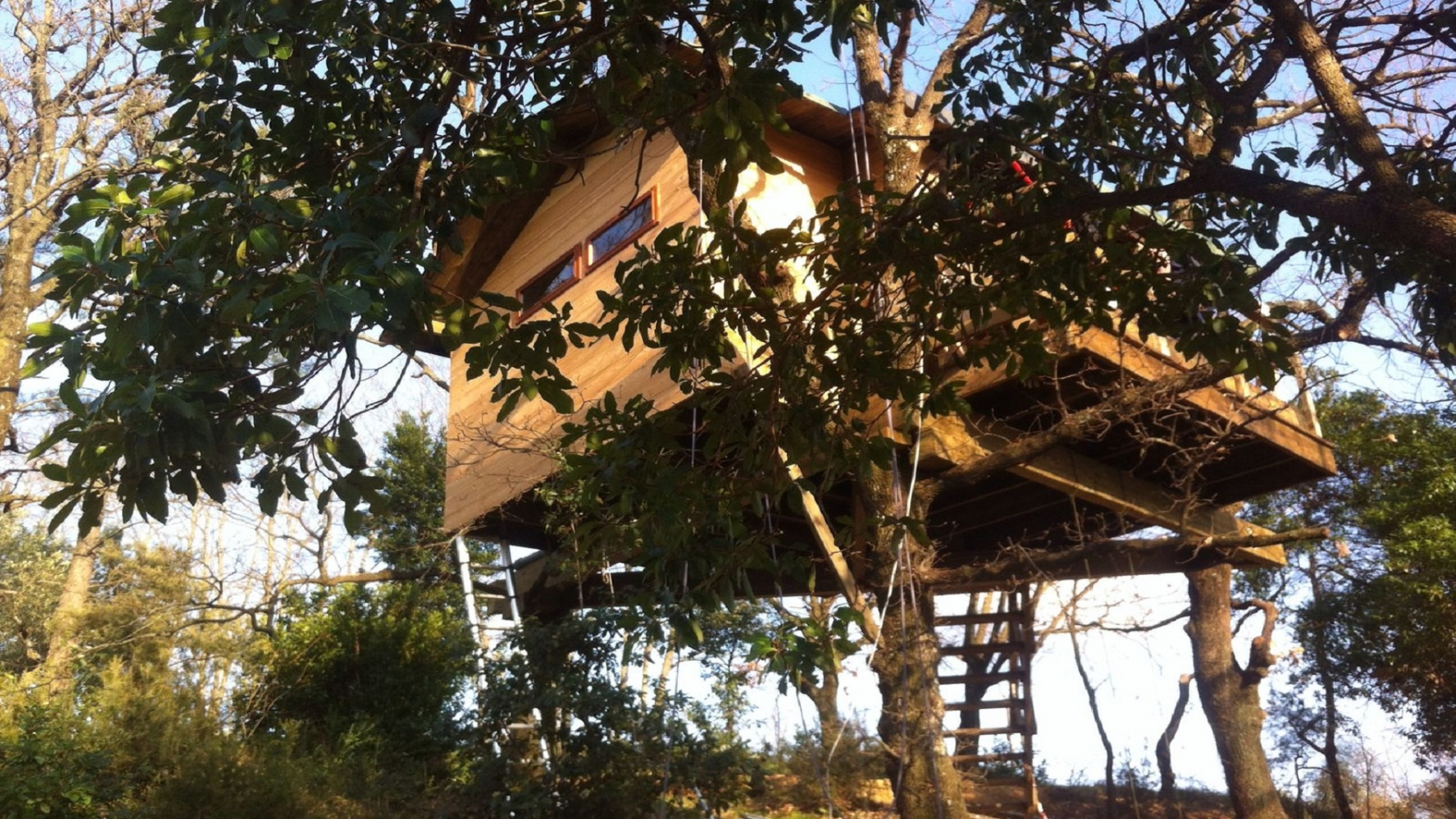 TreeTopBuilder.net costruisce suites case sugli alberi per il  trentino alto adige trento e bolzano