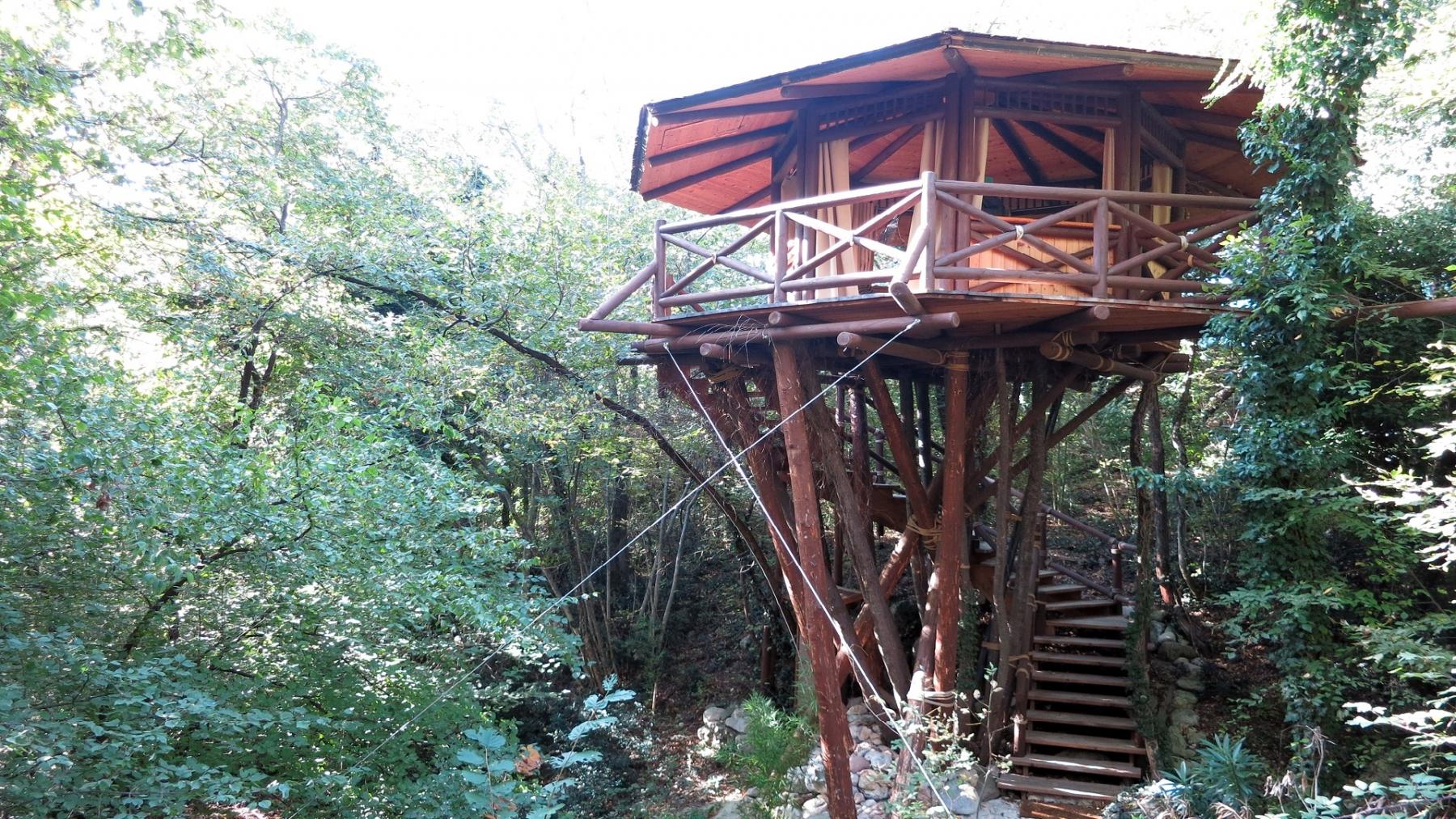 casa sugli alberi1