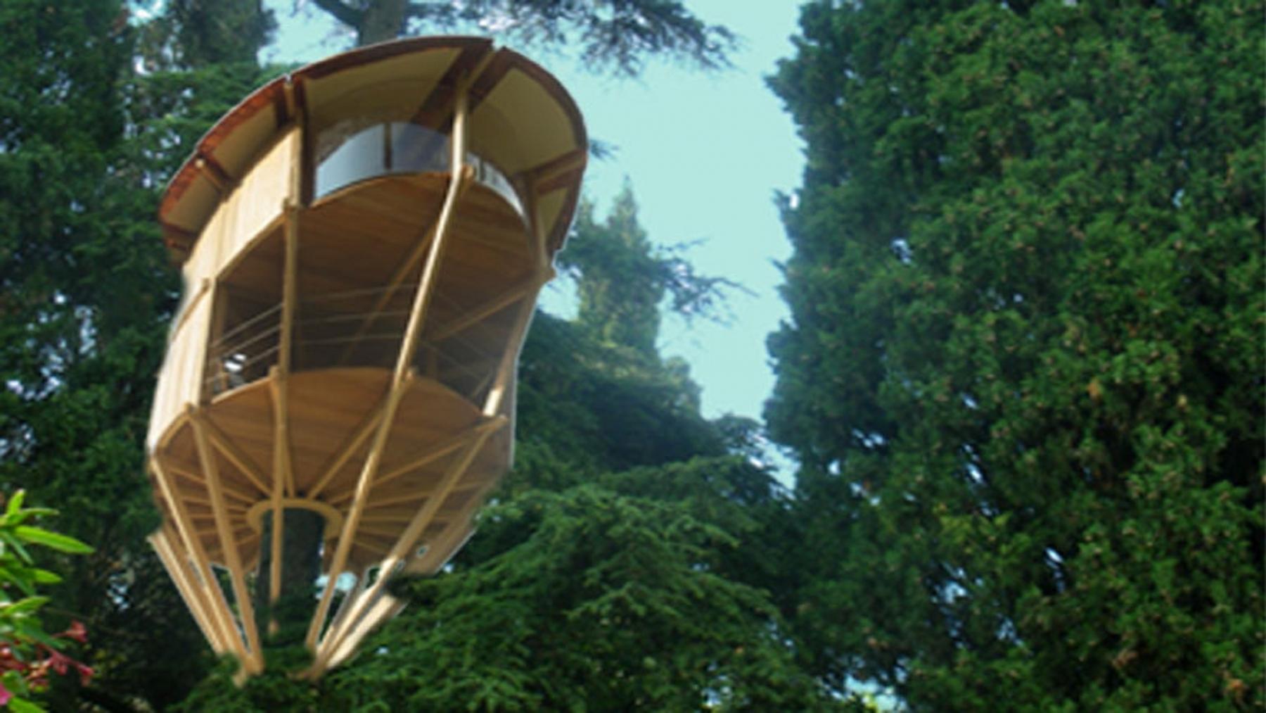 1-albergo-sugli-alberi-lusso