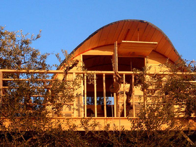 casa nell'oliveto