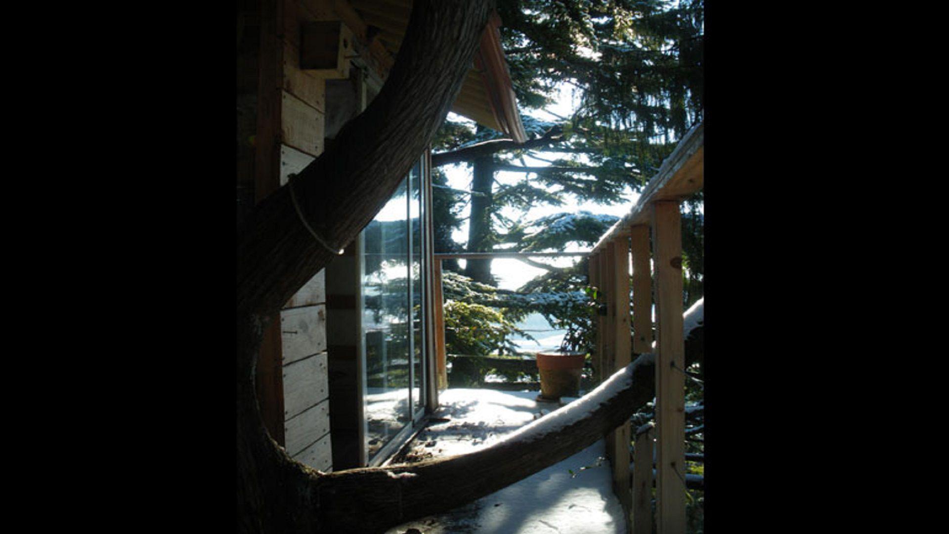 casetta tra gli alberi