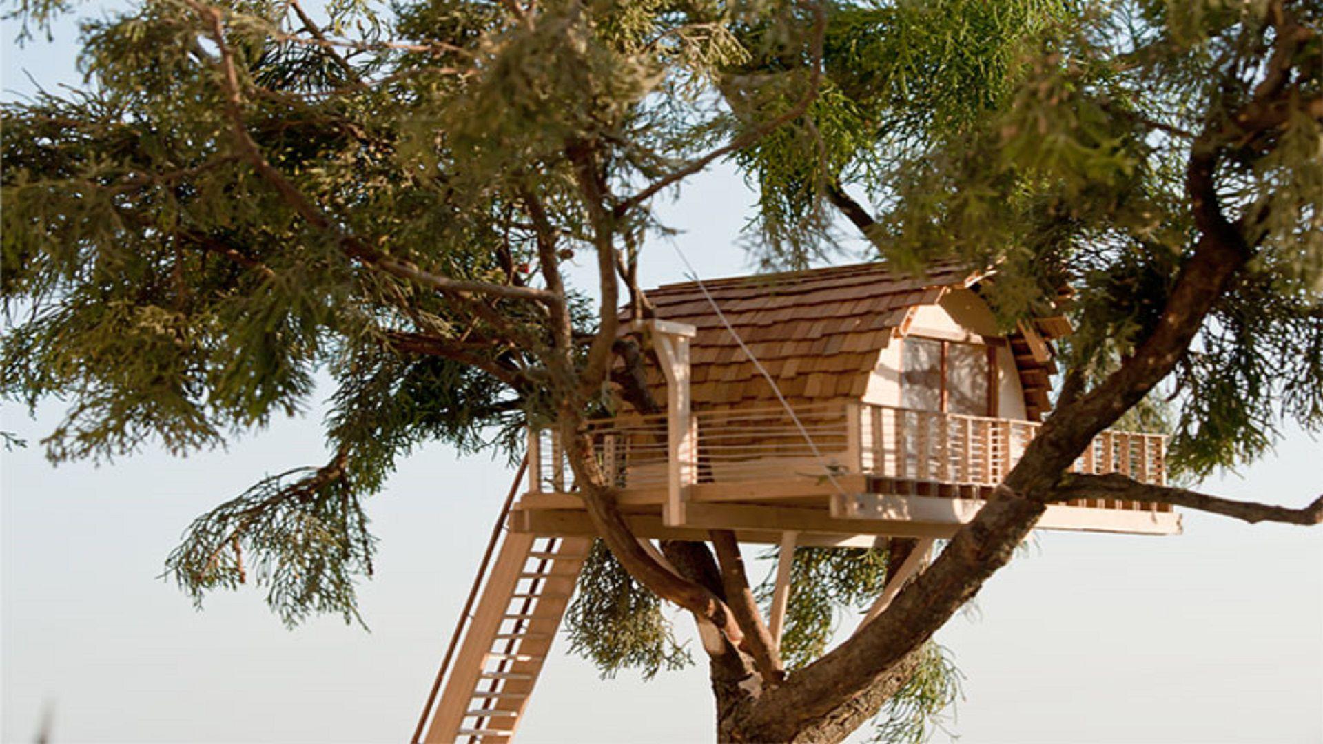 stupenda-casa-sull-albero