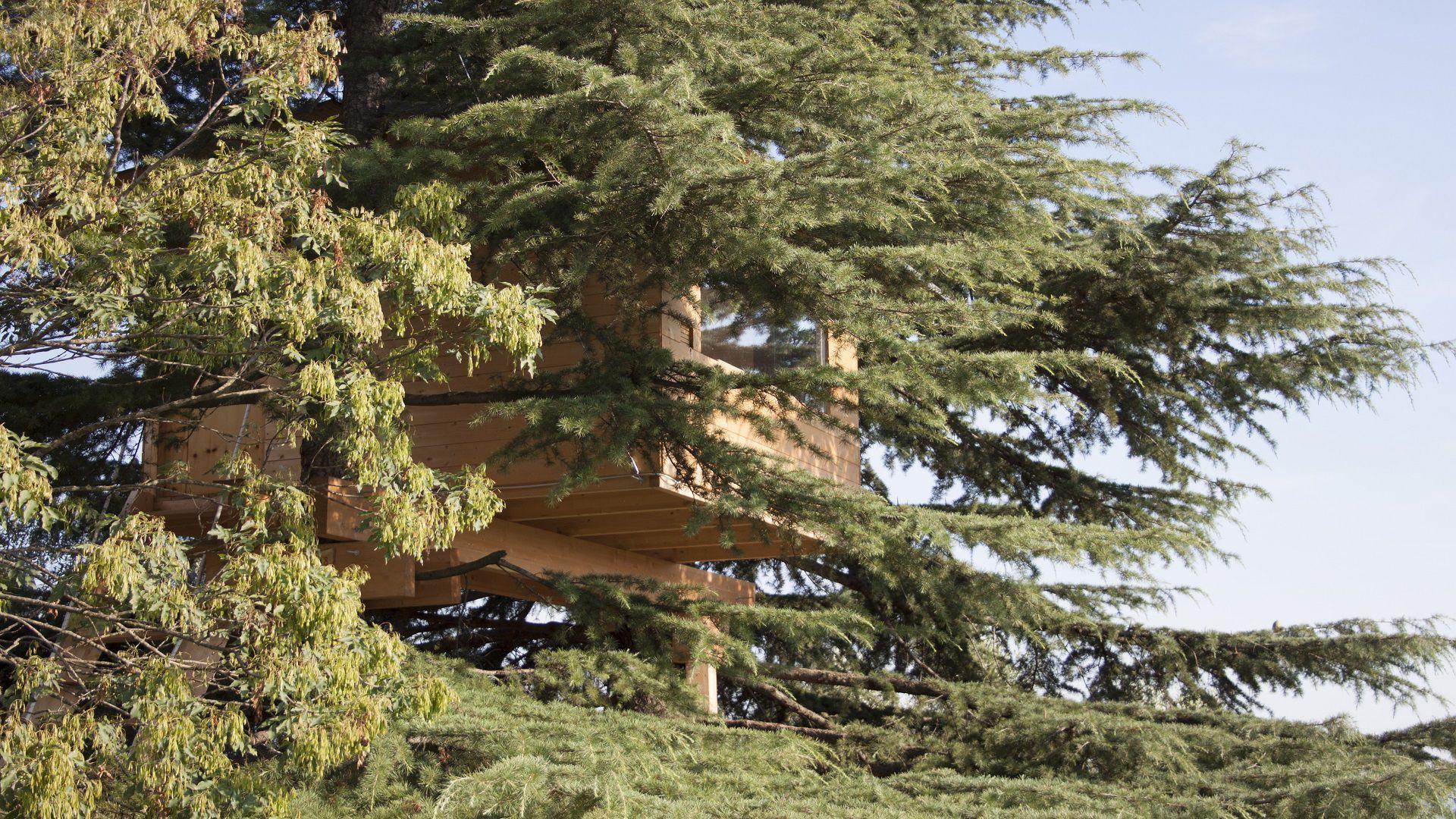 casa sull'albero a trezzolano