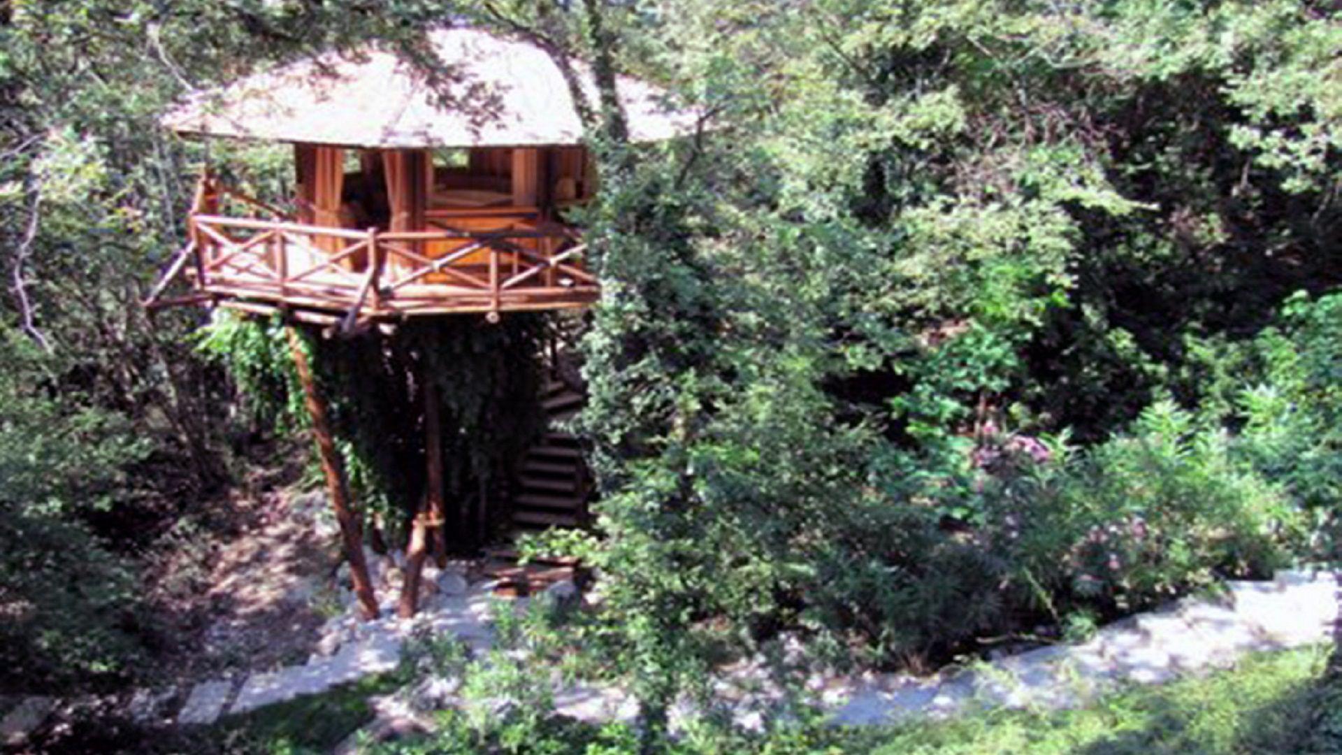 casa sugli alberi