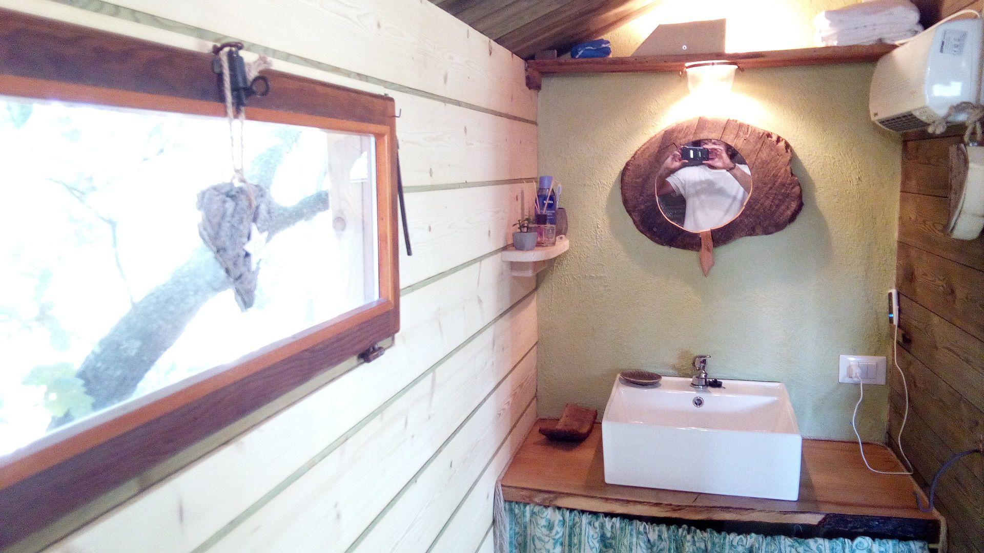 toilette sugli alberi